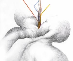 Siamois - Aquarelle et graphite sur papier - 44X57cm - 2017